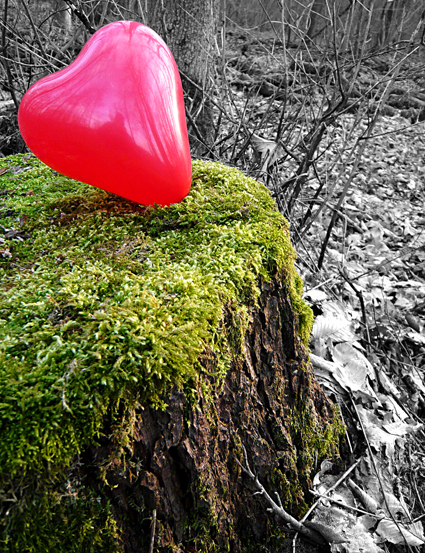 moosherz-ballon_artdesign