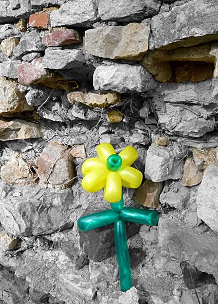 steinblume-ballon_artdesign